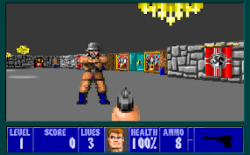 Wolfenstein 3D Play